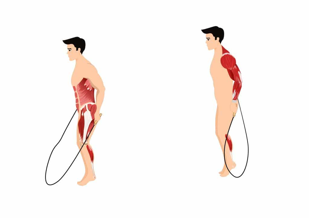 what muscles does jump rope work